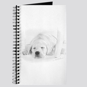 Lab Pup-Nap Journal