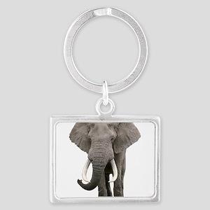 Realistic elephant design Keychains