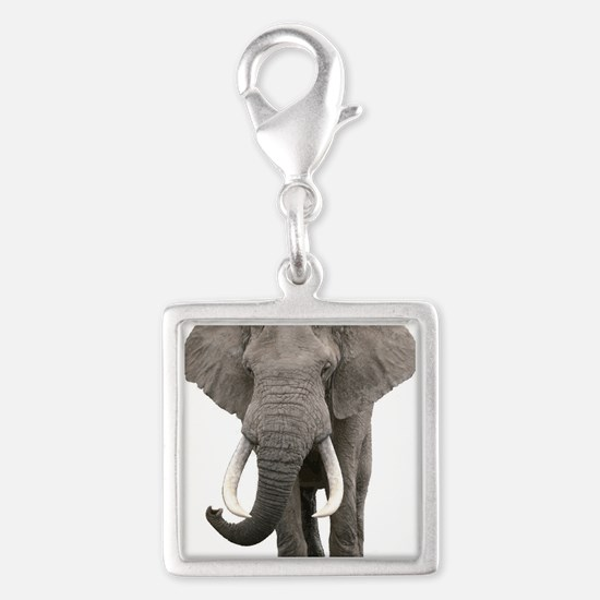 Realistic elephant design Charms