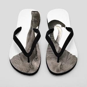 Realistic elephant design Flip Flops