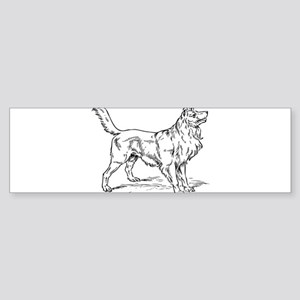Collie dog hand drawing Bumper Sticker
