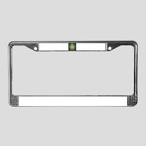 Green Alien Monster License Plate Frame