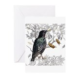 Animal sets Greeting Cards (20 Pack)