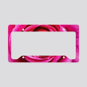Hot Pink Rose Closeup License Plate Holder