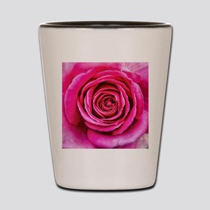 Hot Pink Rose Closeup Shot Glass