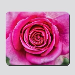 Hot Pink Rose Closeup Mousepad