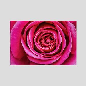 Hot Pink Rose Closeup Rectangle Magnet