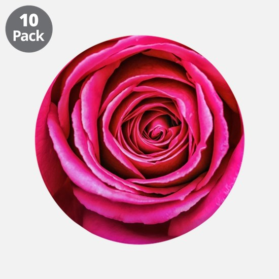 "Hot Pink Rose Closeup 3.5"" Button (10 pack)"