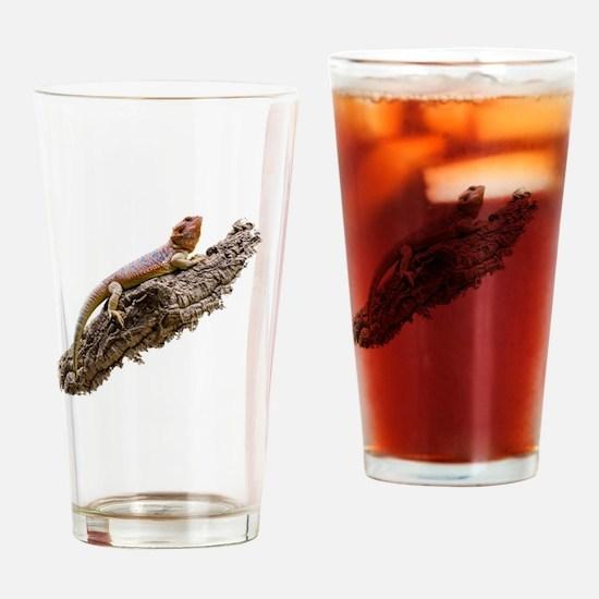 Central Bearded Dragon (Pogona vitt Drinking Glass