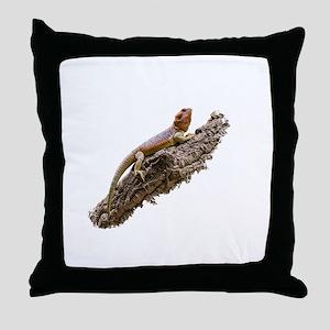 Central Bearded Dragon (Pogona vittic Throw Pillow