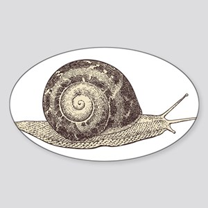 Hand painted animal snail Sticker