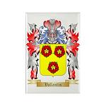 Vallantin Rectangle Magnet (100 pack)