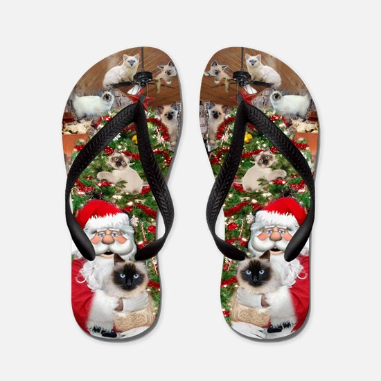 Ragdoll Cats Enjoying Christmas Flip Flops