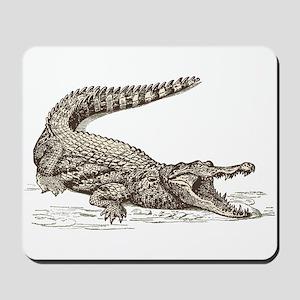 Hand painted animal crocodile Mousepad