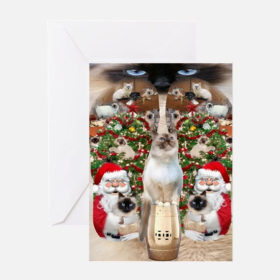 Ragdoll Cats for Christmas Greeting Cards