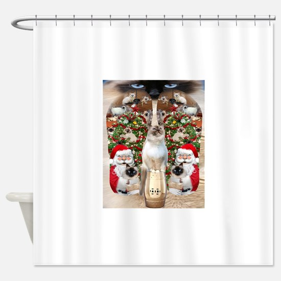 Ragdoll Cats for Christmas Shower Curtain
