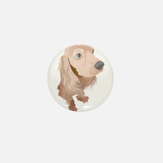 Cute Boykin spaniel dog Mini Button