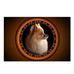 Pomeranian Postcards 8 Pack Small Dog Postcards