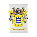 Valdez Rectangle Magnet (10 pack)