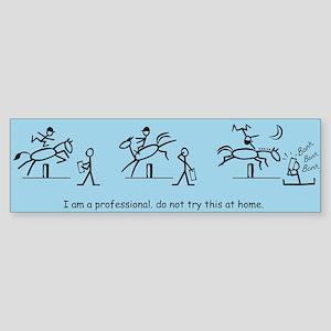 I am a Professional: Judge 2 / Bumper Sticker