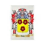 Vala Rectangle Magnet (100 pack)