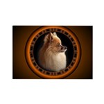 Pomeranian Rectangle Magnet (100 pack)