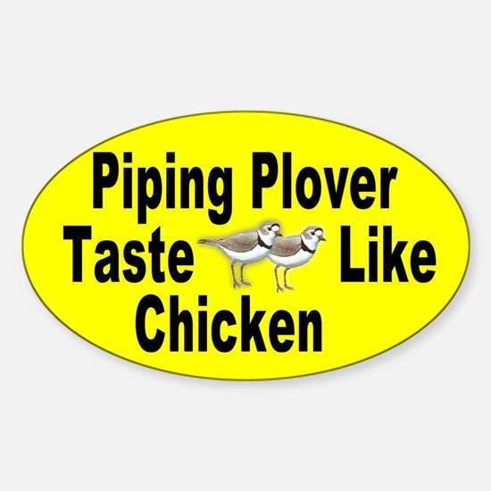 Piping Plover Decal