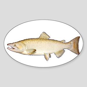 Chinook Salmon Oval Sticker