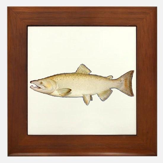 Chinook Salmon Framed Tile