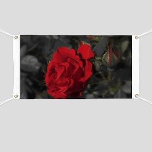 red rose in dark mourning death background Banner