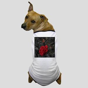 red rose in dark mourning death backgr Dog T-Shirt