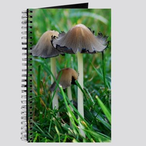 Mushrooms #2 Journal