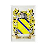 Villavicencio Rectangle Magnet (10 pack)
