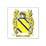 Villavicencio Square Sticker 3