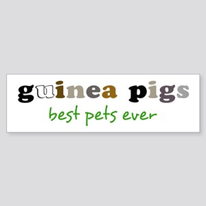 Guinea Pigs-Best Pets Bumper Sticker