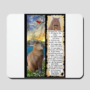 Capybara FUN Property Laws & Rules Mousepad
