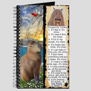 Capybara FUN Property Laws & Rules Journal