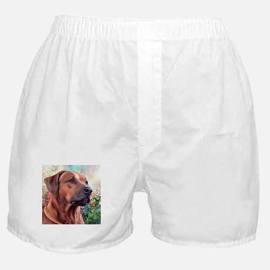 Rhodesian Ridgeback Painting Boxer Shorts