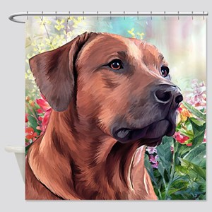 Rhodesian Ridgeback Painting Shower Curtain