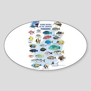 Aquarium Oval Sticker