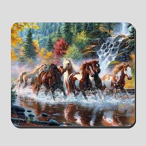 Wild Creek Run Mousepad