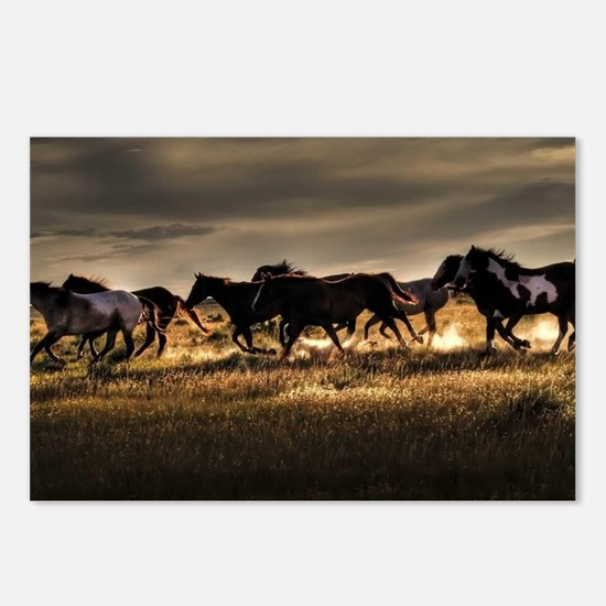 Horses Postcards (Package of 8)