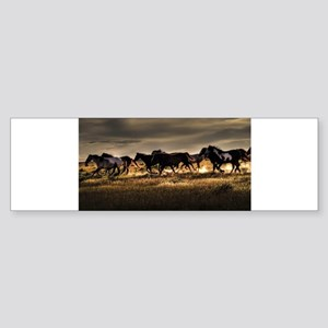 Wild Horses Running Free Bumper Sticker