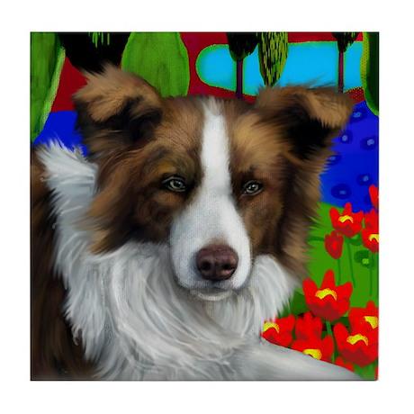 BORDER COLLIE DOG red & white Tile Coaster