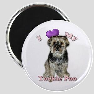 Love My Yorkie Poo Magnets