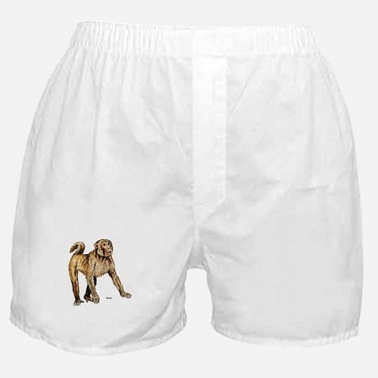 Macaque Monkey Boxer Shorts