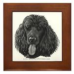 Shadow, Standard Poodle Framed Tile