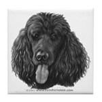 Shadow, Standard Poodle Tile Coaster