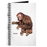 Red Uakari Monkey Journal