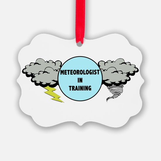 Meteorologist in Training Ornament